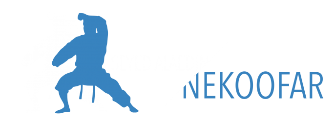 Seyed Alaedin NEKOOFAR